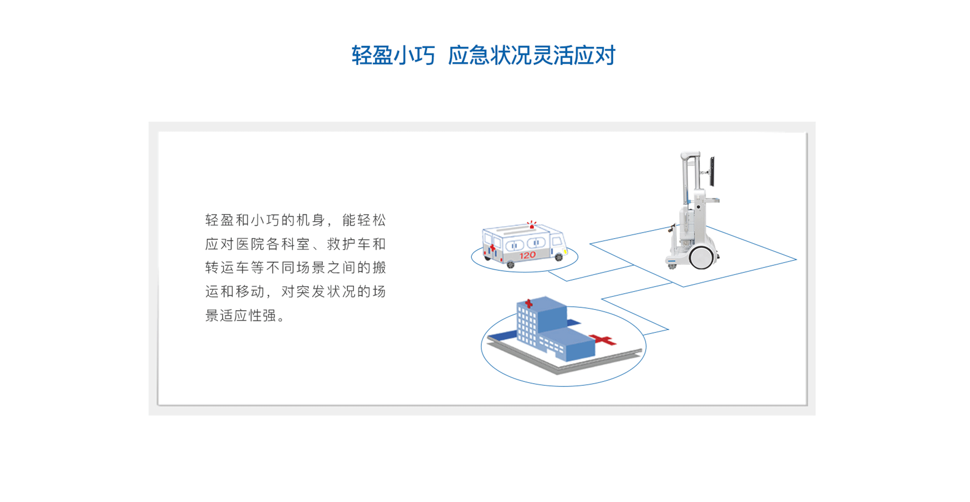 Emer/Neo DR 珍珠